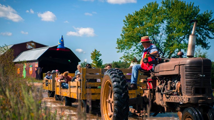 Cox Farms celebrates the season with Fall Fest