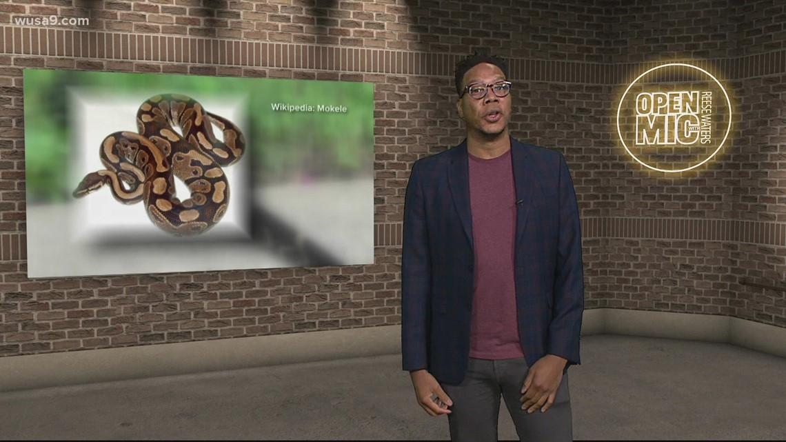Python nabbed in Greenbelt, Maryland   Open Mic