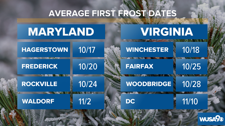 Average First Frost Dates for the DMV