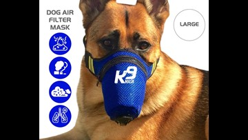 Dog masks exist, and sales have spiked as Coronavirus spreads
