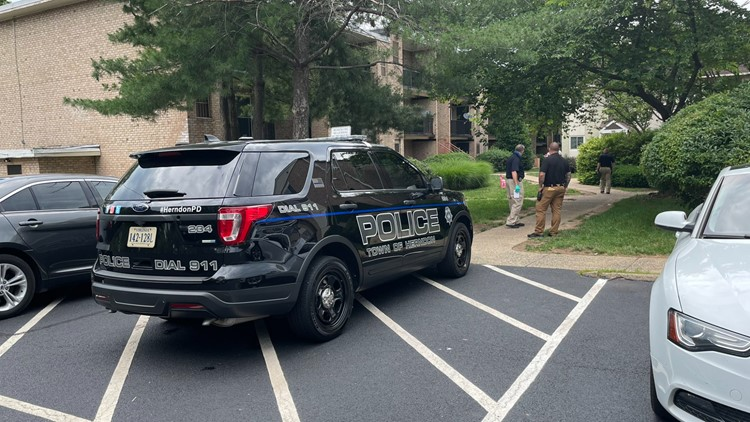 Herndon Police: Two kids and adult killed in triple homicide