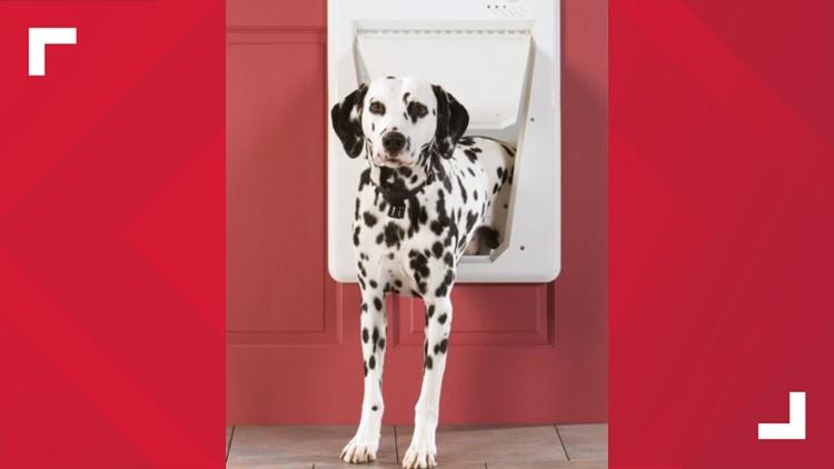 PetSafe Electronic Smart Door