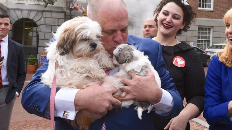 hogan kissing dogs