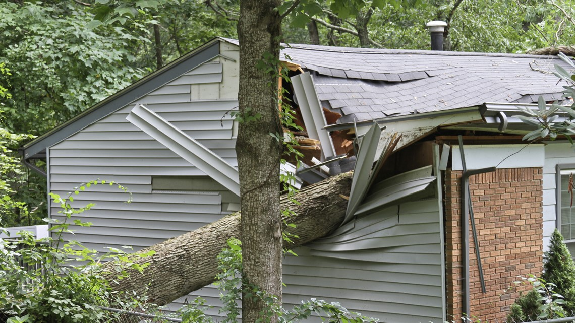 VERIFY: Who pays if your neighbor's tree falls on your home?