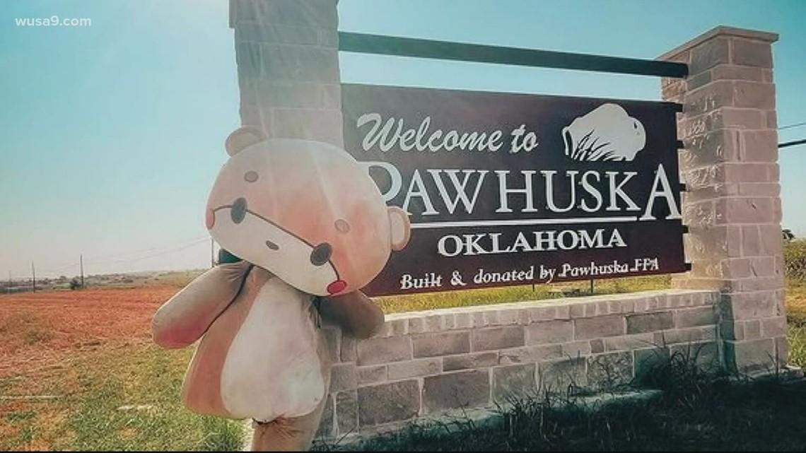 Man in teddy bear costume makes cross-country trek | Get Uplifted