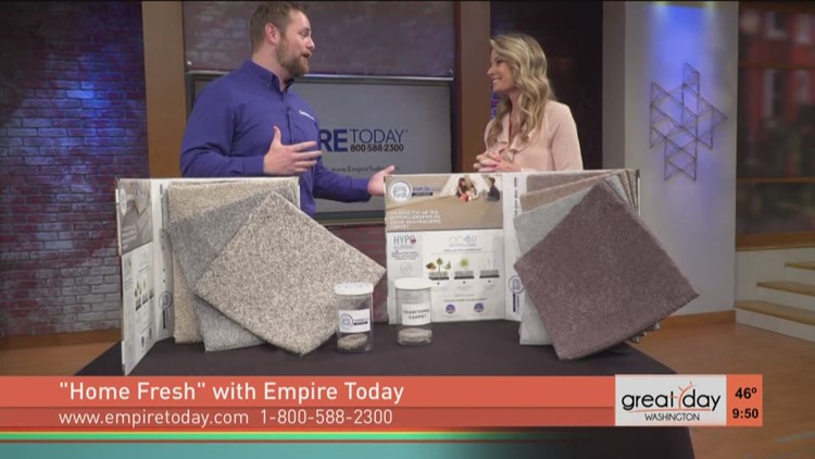 amazing stain and odor resistant carpets from empire today