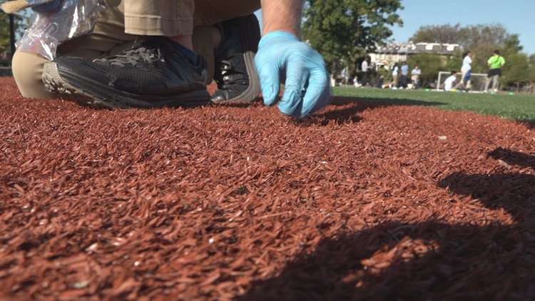 DC artificial turf fields tested as possible source of cancer-causing chemicals