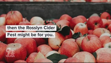 Cider and pie? This could be what sweet dreams are made of