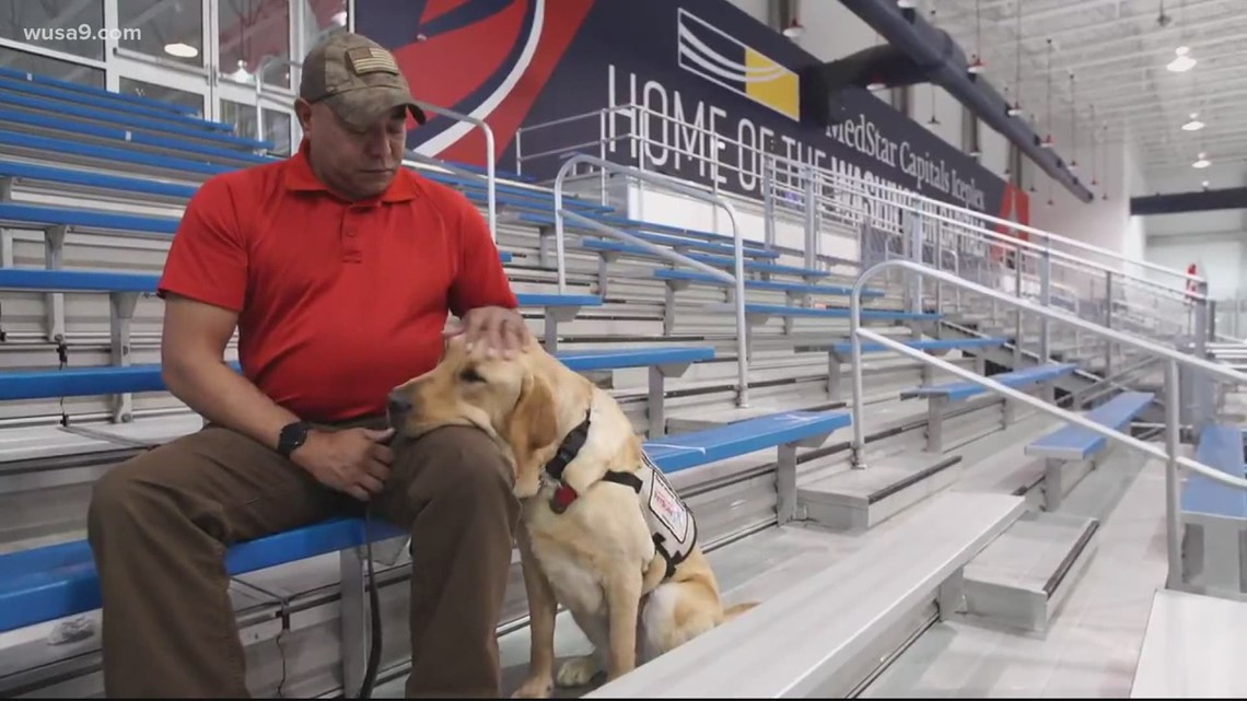 Washington Capitals' service dog gets his partner | It's A DC Thing