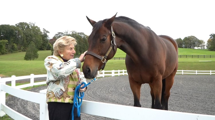 'The love of the horse never goes away' | 80-year-old equestrian takes on International Horse Show