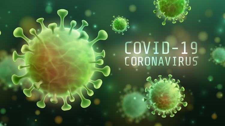 COVID-19 Live Updates   2,100+ hospitalized in Virginia, 3,300+ in North Carolina