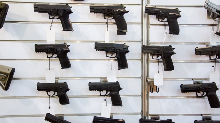 Virginia Senate rejects gun control bill amendments